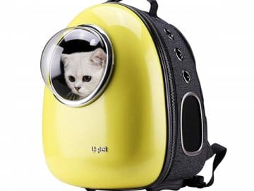 Cat Bubble Backpack with Clear Window