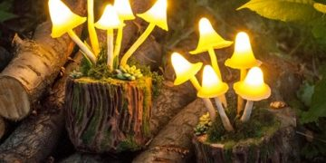 Mushrooms Night Light