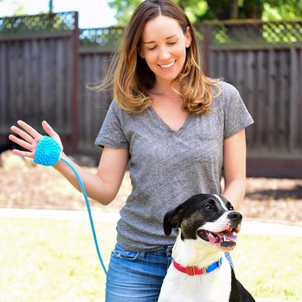 Palm-Sized Dog Scrubber and Sprayer