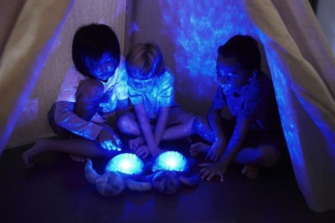 Turtle Night Sky Star Projector