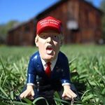 Donald Trump Gag Gifts
