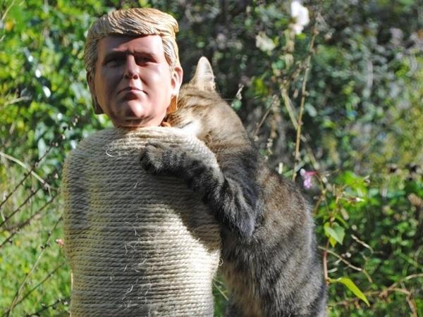 Trump Cat Scratcher Post