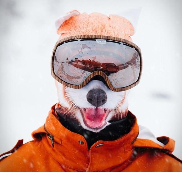 Red Panda Ski Mask