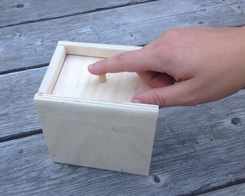 Scare Box