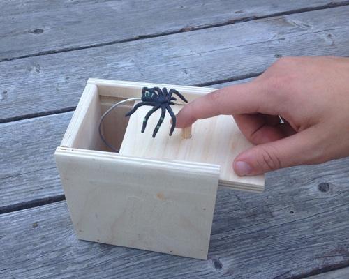 Spider Scare Box