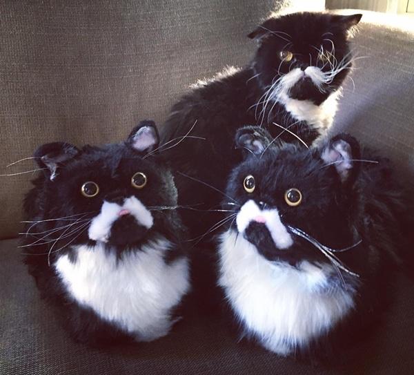 Custom Cat Slippers