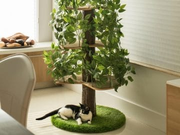 Indoor Cat Tree House