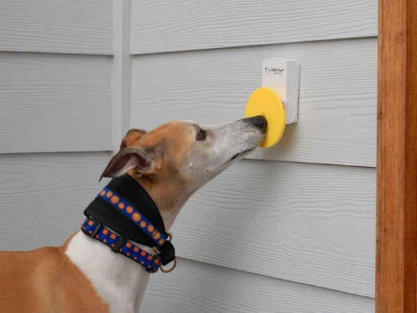 Doorbell For Dogs