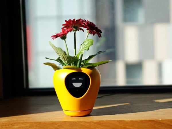 The Smart Planter With Feelings
